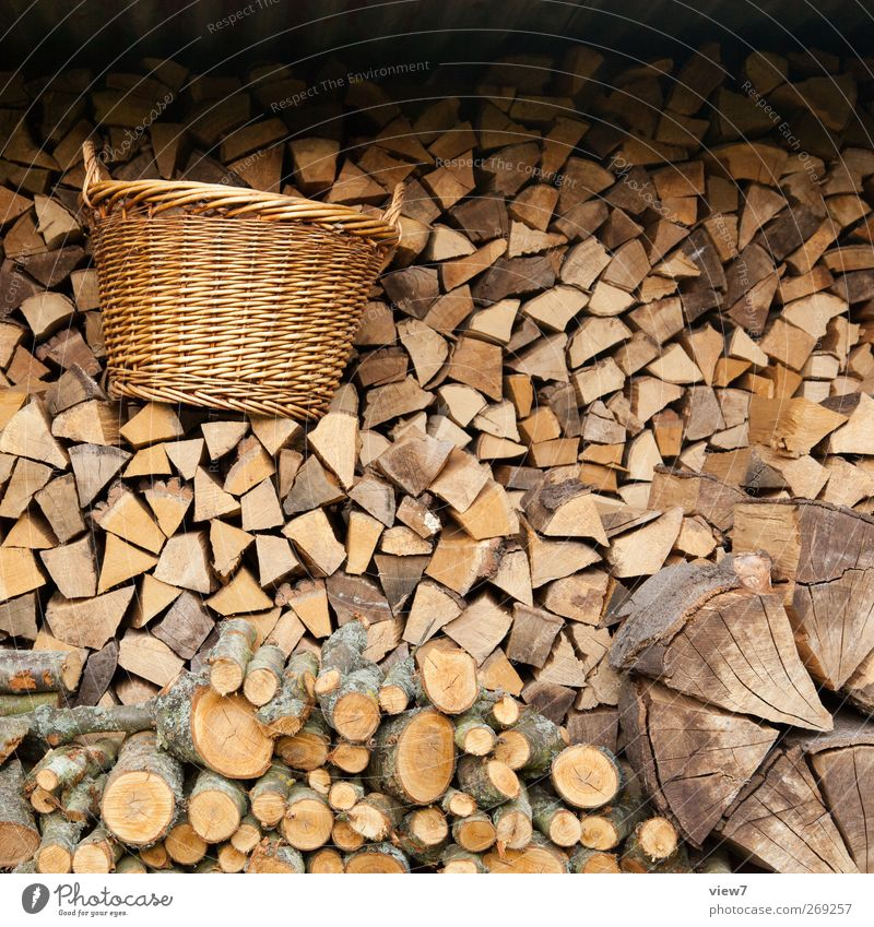 Nature Wood Arrangement Authentic Energy Hope Stack Stagnating Basket Quality Heat Supply Firewood Gardenhouse Weekend Home improvement