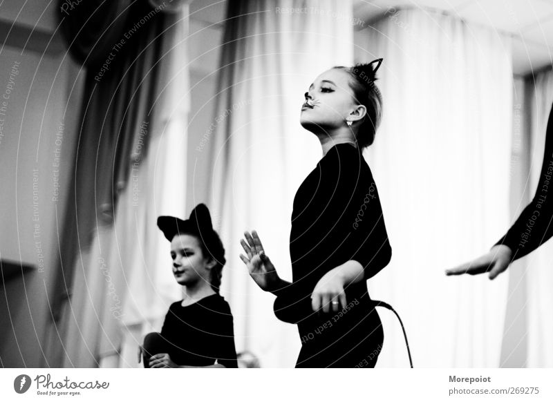 Cat Cat Human being Child Youth (Young adults) Hand Girl Joy Feminine Emotions Movement Head Art Body Dance Infancy Leisure and hobbies