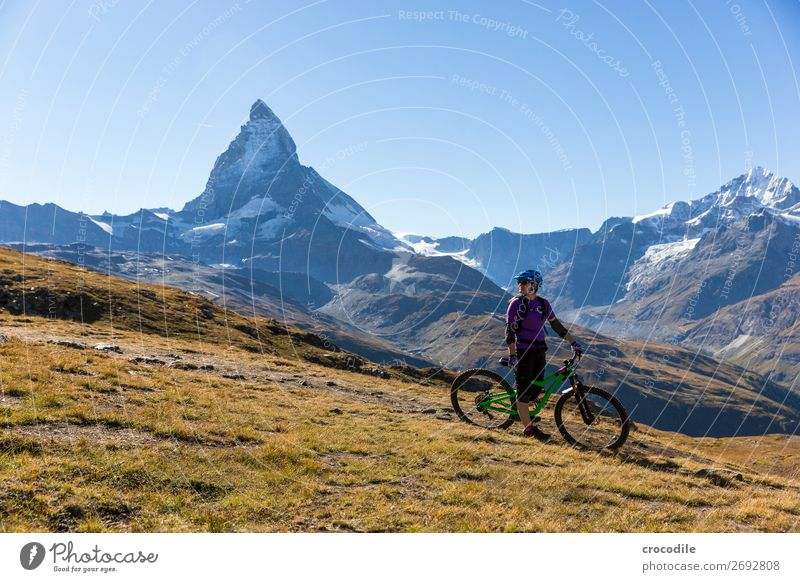 #776 Switzerland Matterhorn Landmark Mountain Village Hiking Mountain bike trail Lanes & trails Colour photo soft light Peak Meadow Peaceful Snow Glacier Idyll