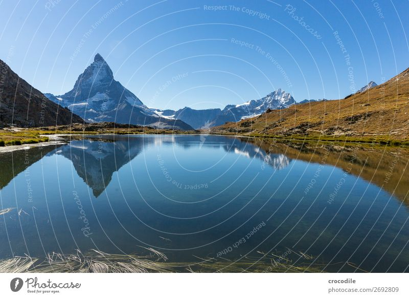 # 775 Switzerland Matterhorn Landmark Mountain Village Hiking Mountain bike trail Lanes & trails Colour photo soft light Peak Meadow Peaceful Snow Glacier Idyll
