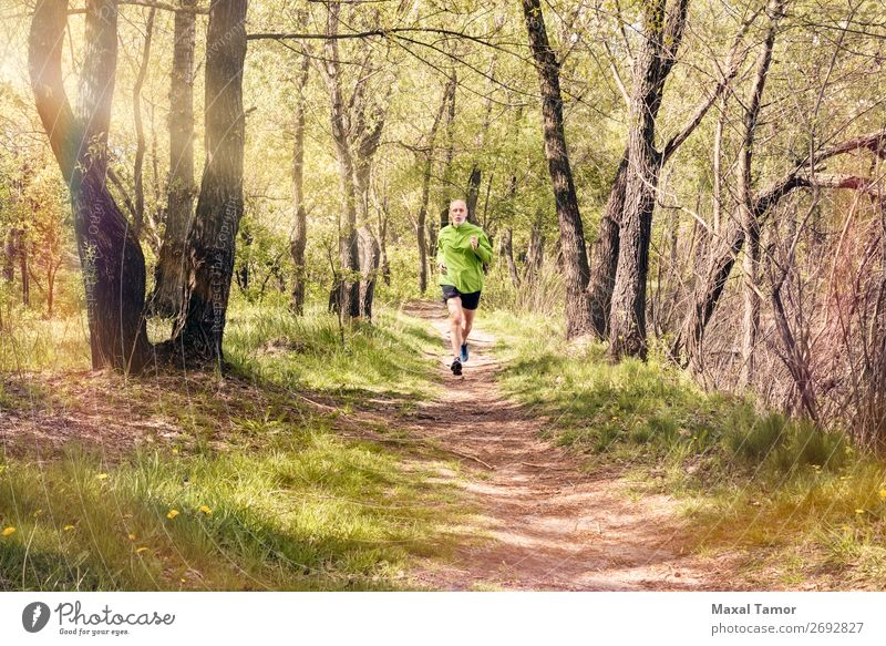 Senior Man Running in the Forest Lifestyle Happy Leisure and hobbies Summer Sports Jogging Human being Adults Nature Tree Park Old Fitness Green 60s Action