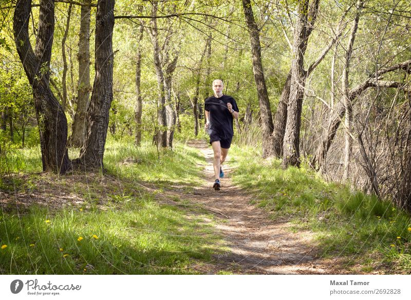 Senior Man Running in the Forest Lifestyle Happy Leisure and hobbies Summer Sports Jogging Human being Adults Nature Park Old Fitness Black 60s Action Caucasian