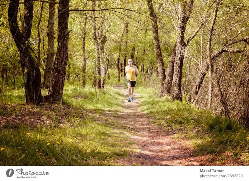 Senior Man Running in the Forest Lifestyle Happy Leisure and hobbies Summer Sports Jogging Human being Adults Nature Tree Park Old Fitness Yellow 60s Action