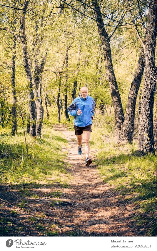 Senior Man Running in the Forest Lifestyle Happy Leisure and hobbies Summer Sports Jogging Human being Adults Nature Tree Park Old Fitness Blue 60s Action