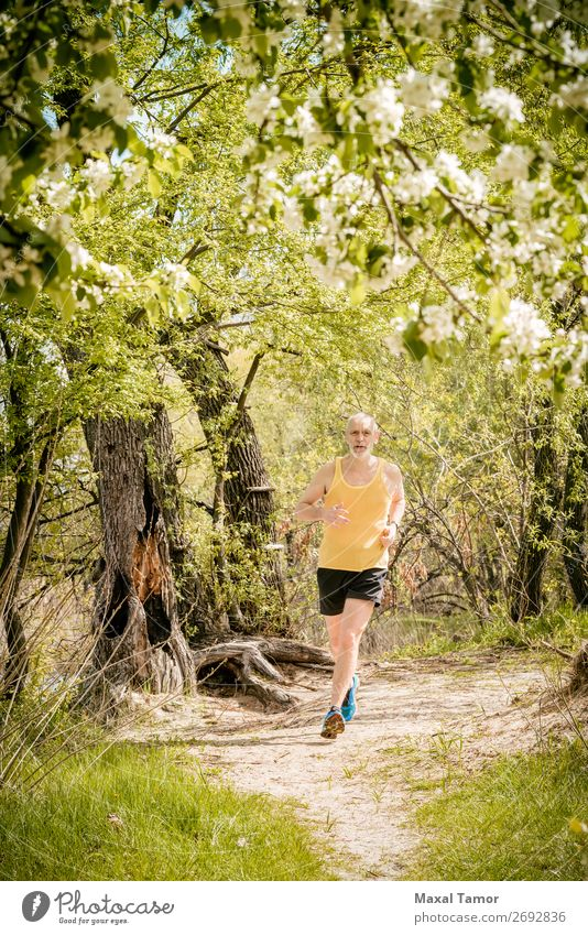 Senior Man Running in the Forest Apple Lifestyle Happy Leisure and hobbies Summer Sports Jogging Human being Adults Nature Tree Flower Blossom Park Old Fitness