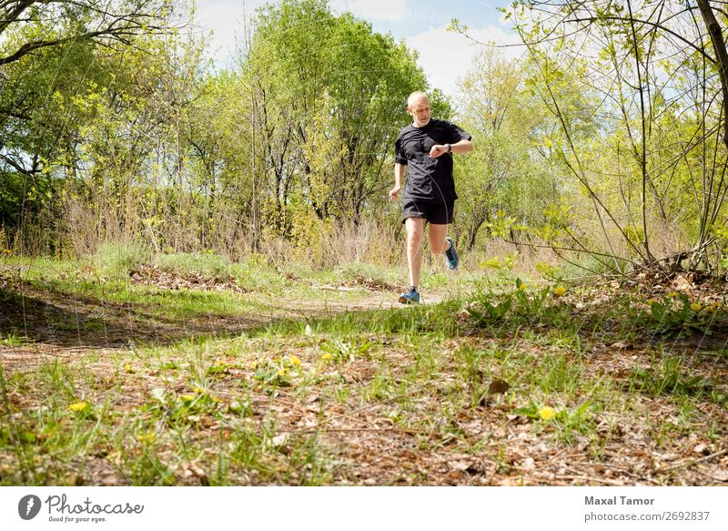 Senior Man Running in the Forest Lifestyle Happy Leisure and hobbies Summer Sports Jogging Human being Adults Nature Park Old Observe Fitness 60s Action