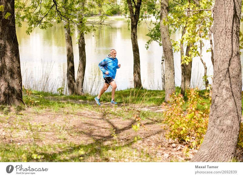Senior Man Running in the Forest Lifestyle Happy Leisure and hobbies Summer Sports Jogging Human being Adults Nature Park Lake River Old Fitness 60s Action