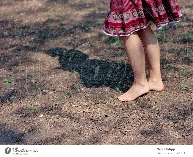 Human being Woman Child Youth (Young adults) Red Sun Joy Adults Feminine Life Legs Feet Earth Dance Young woman Natural