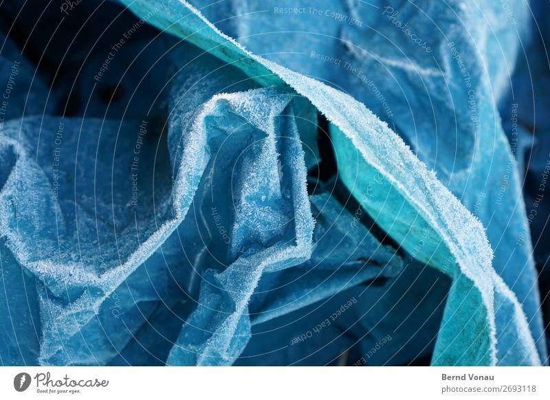 hoarfrost Plastic Cold Trash Garbage bag Dispose of Winter Blue Folds Plastic bag Abstract Colour photo Exterior shot Close-up Deserted Day