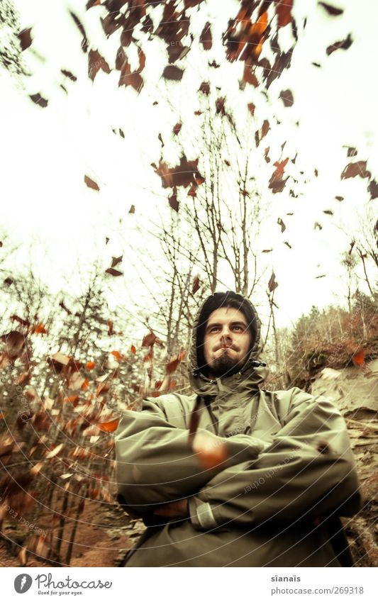 Human being Man Nature Leaf Adults Forest Autumn Weather Wind Masculine Lifestyle Might Observe Strong Brave Pride