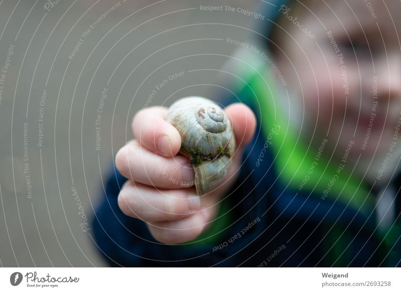 snail child Trip Adventure Human being Child 1 Winter Happiness Healthy Inspiration Snail Snail shell Kindergarten Collection Colour photo Exterior shot