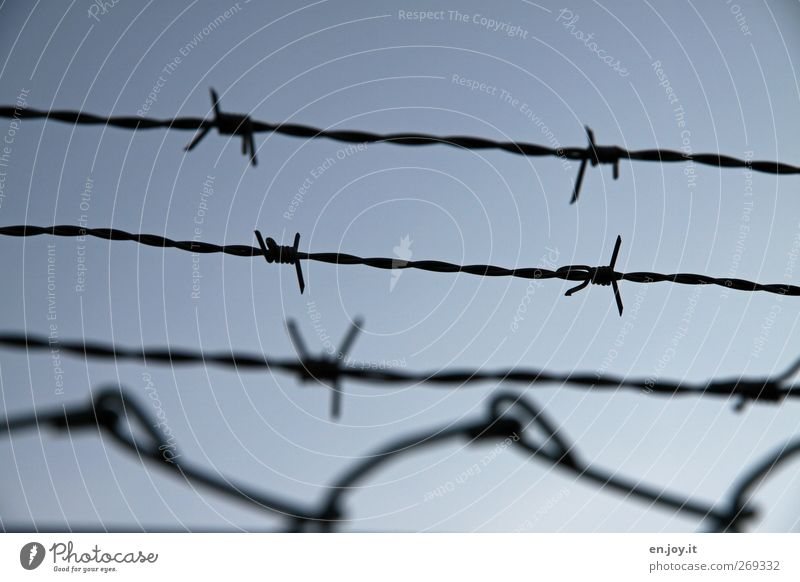 Blue Loneliness Black Sadness Fear Dangerous Safety Gloomy Threat Point Protection End Fence Force Fear of death Steel