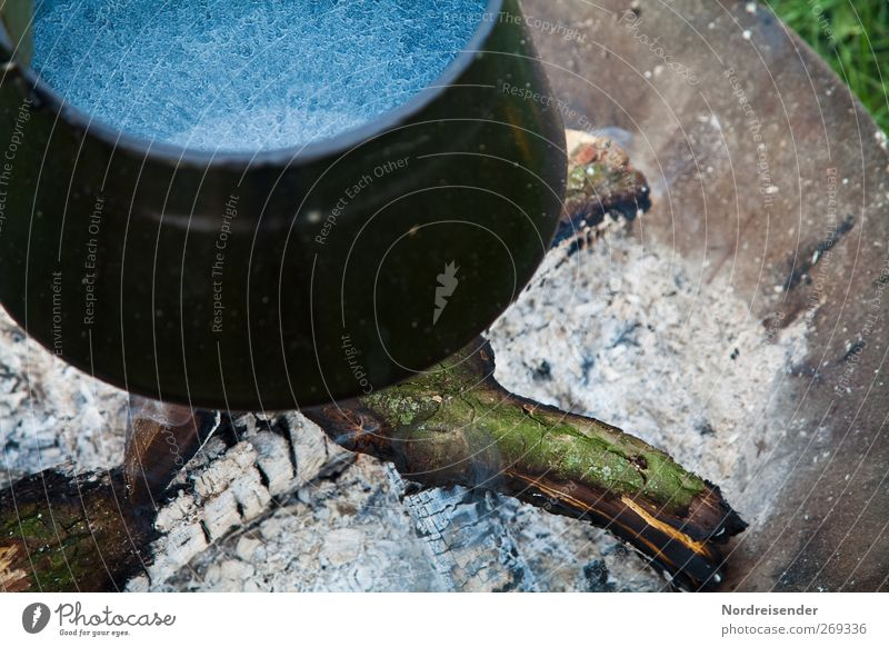 Coffee coming soon Nutrition Bowl Pot Fireplace Cooking Enamel Wood Firewood Colour photo Subdued colour Exterior shot Deserted Section of image