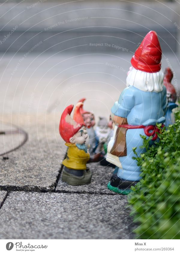 Garden Decoration Communicate Idyll Kitsch Mysterious Argument Whimsical Dwarf Assembly Garden gnome