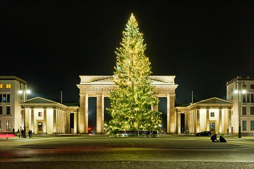 Christmas tree at the Brandenburg Gate Evening Berlin Dark Deserted Night Pariser Platz Copy Space Christmas & Advent Illumination Jewellery Decoration