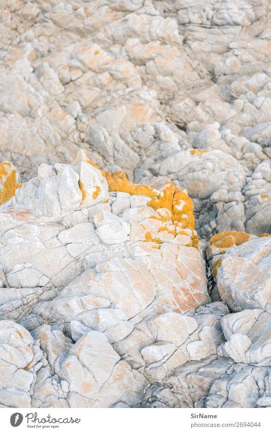 430 [rock tender] Mountain Environment Nature Landscape Elements Coast Lakeside Reef Stone Esthetic Yellow White Eternity Idyll Pure Change Moss Lichen Rock