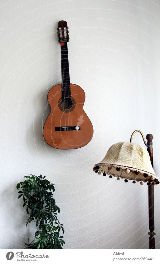 Silent sound life Music Listen to music Musician Guitar Esthetic Musical instrument Lampshade Seventies Still Life Houseplant Leisure and hobbies Calm