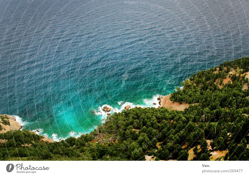 Nature Blue Water Green Vacation & Travel Tree Plant Summer Ocean Calm Forest Relaxation Landscape Warmth Coast Sand