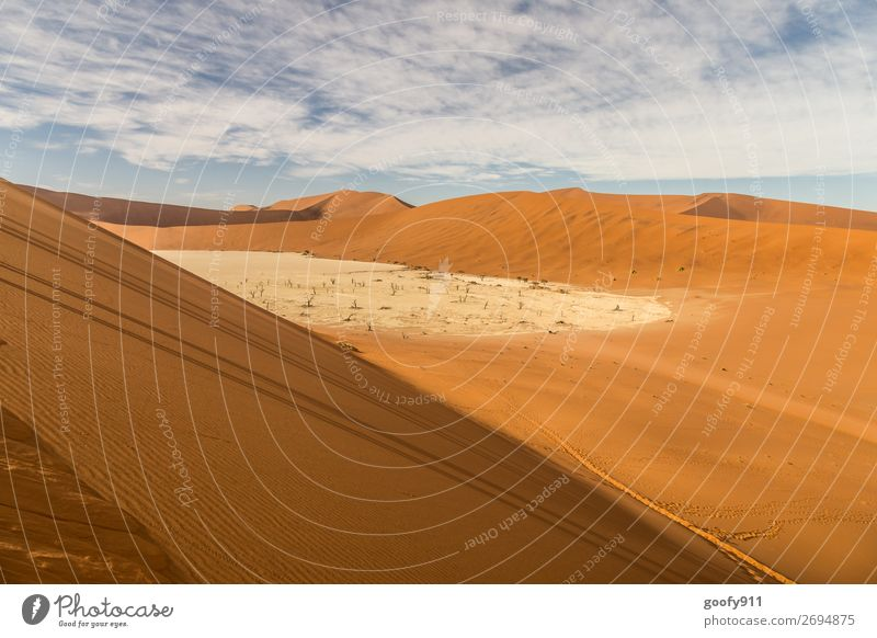 Deadvlei Namibia Vacation & Travel Tourism Trip Adventure Far-off places Freedom Sightseeing Safari Expedition Environment Nature Landscape Earth Sand Sky