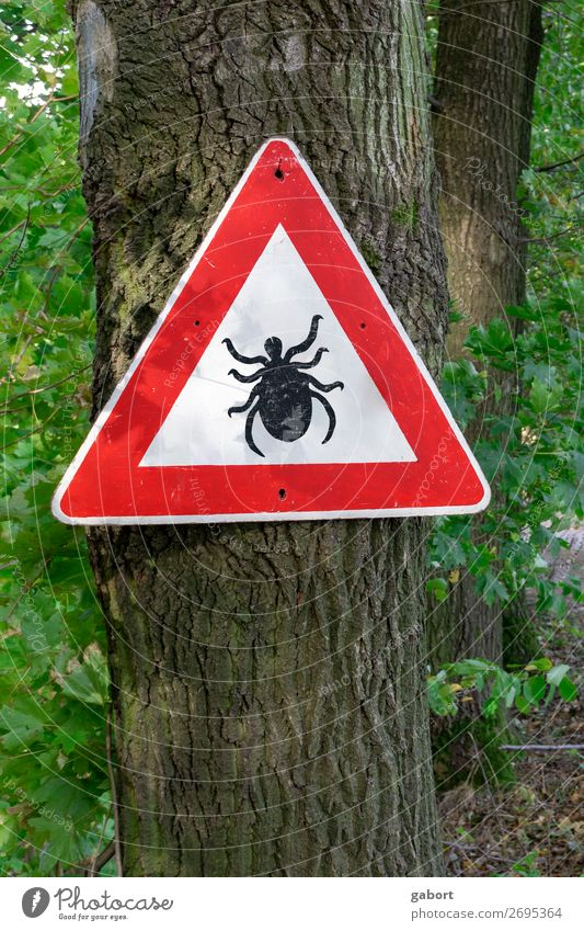 tick insect warning sign in forest Nature Hiking Green Red lyme Quirk disease parasitic Ixodes borreliosis ricinus danger arachnid arthropod pestilence
