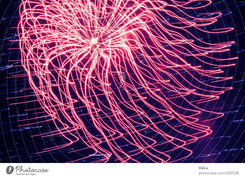 jellyfish Night sky Spring Pink Red Joy Euphoria Firecracker New Year's Eve Exposure Colour photo Exterior shot Experimental Abstract Deserted