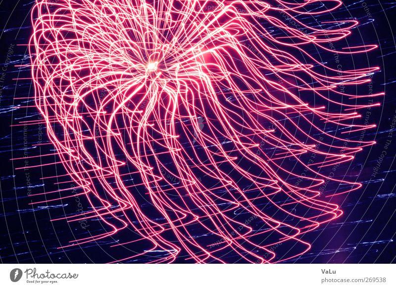 Red Joy Spring Pink New Year's Eve Euphoria Exposure Night sky Long exposure