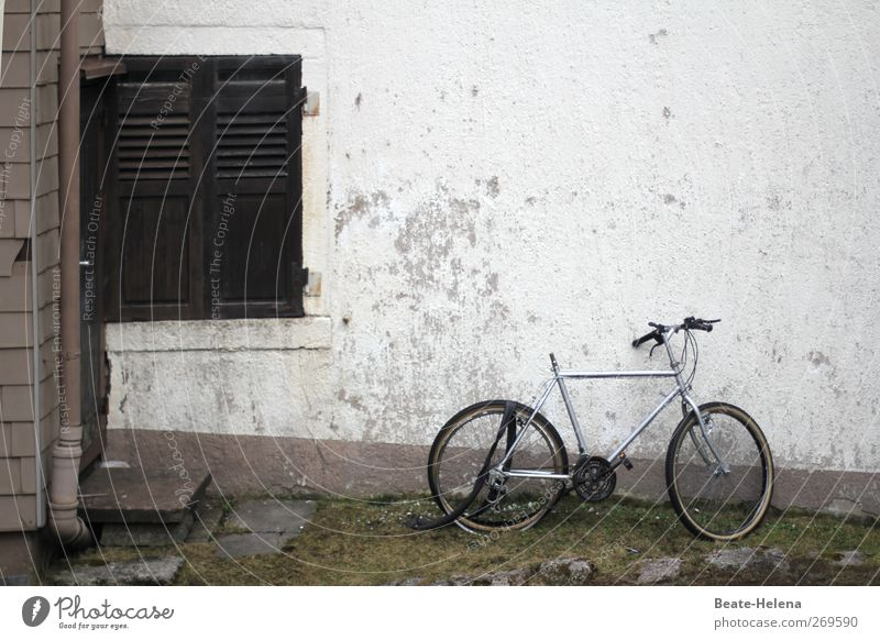 The ravages of time House (Residential Structure) Wall (barrier) Wall (building) Facade Window Bicycle Broken Gray Decline Level Colour photo Exterior shot