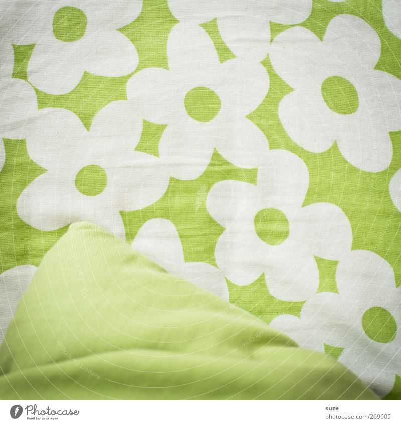 spotless Design Flower Blossom Cloth Happiness Fresh Beautiful Green White Cushion Textiles Graphic Wrinkles Decoration Abstract Background picture Colour photo