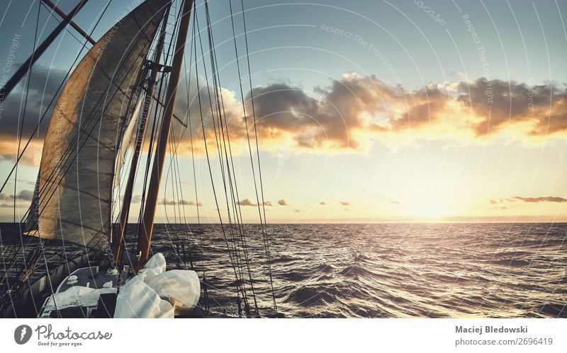 Old schooner sailing at sunset. Lifestyle Vacation & Travel Adventure Freedom Expedition Sun Ocean Waves Sailing Sky Horizon Wind Navigation Cruise Boating trip