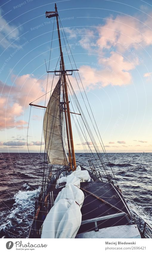 Old schooner sailing at sunset. Lifestyle Vacation & Travel Adventure Far-off places Freedom Cruise Sun Ocean Waves Sailing Sky Horizon Wind Gale North Sea