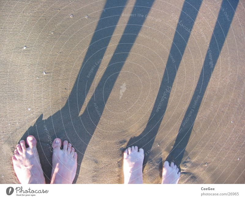 Near-along Beach Ocean Toes Wet Damp Dirty Water Sand Feet Shadow Legs Barefoot