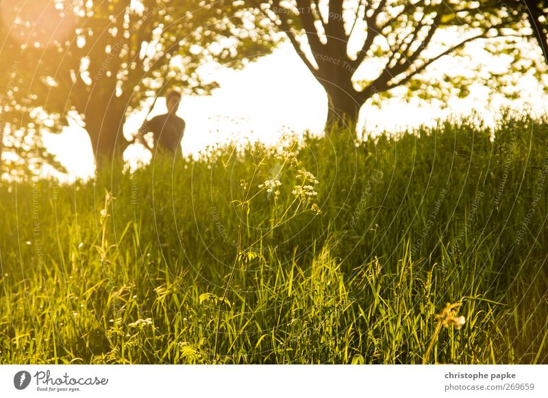 Human being Nature Beautiful Plant Summer Relaxation Landscape Meadow Grass Bright Beautiful weather