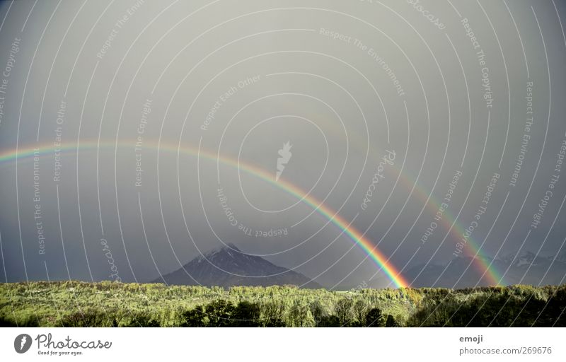 unbelievable Environment Nature Landscape Sky Climate change Storm Wind Gale Thunder and lightning Forest Exceptional Rainbow Force of nature Natural phenomenon