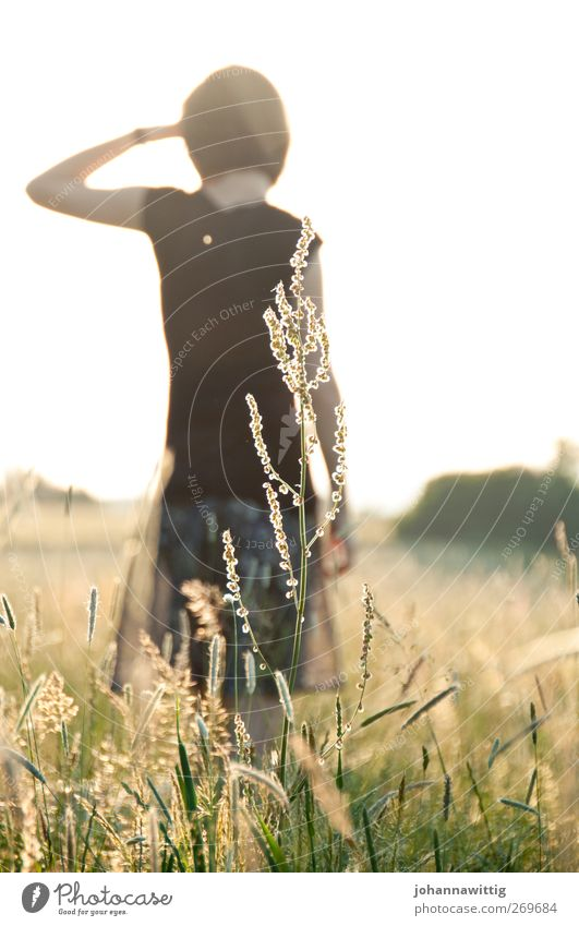 Human being Youth (Young adults) Summer Flower Adults Relaxation Feminine Grass Spring Young woman Field Back Wait 18 - 30 years Meditative Bushes