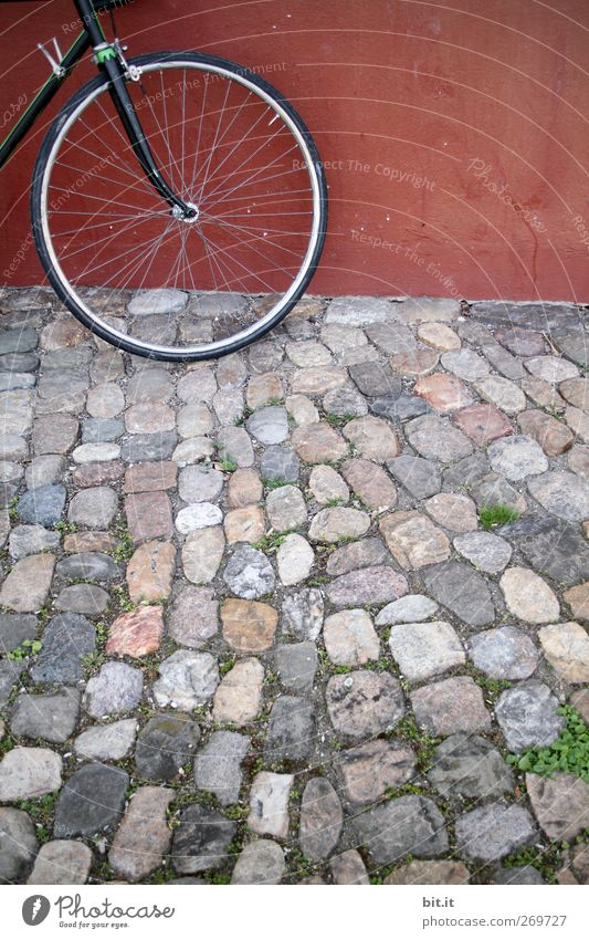 front wheel Bicycle Places Wall (barrier) Wall (building) Means of transport Stone Stand Round Gray Red Cobblestones Wheel Spokes Footpath Tire Front side