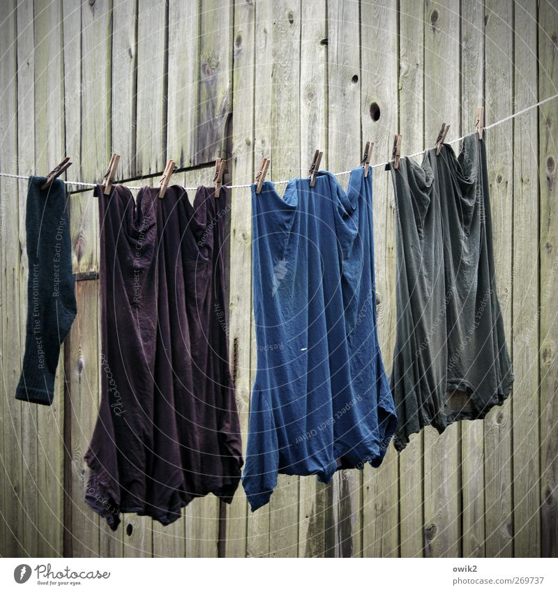 Blue Black Wall (building) Movement Wood Gray Wall (barrier) Together Facade Wait Wet Poverty Clothing T-shirt Clean Violet