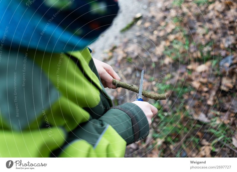 carving knives Parenting Child Study Boy (child) Utilize Green Hiking Carve Knives Switchblade Nature Forest Saw Branch holiday camp Colour photo Exterior shot