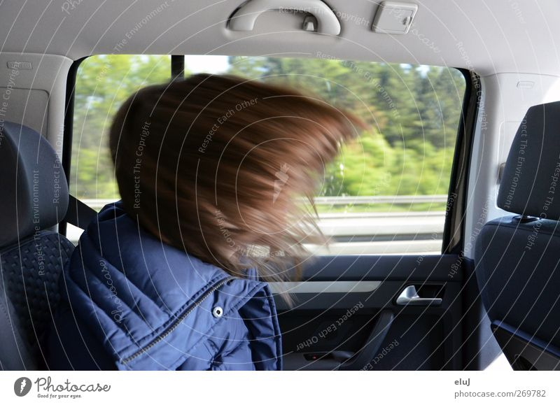 emergency braking Vacation & Travel Youth (Young adults) Hair and hairstyles 1 Human being Motoring Highway Car Driving Blue Brown brake Colour photo