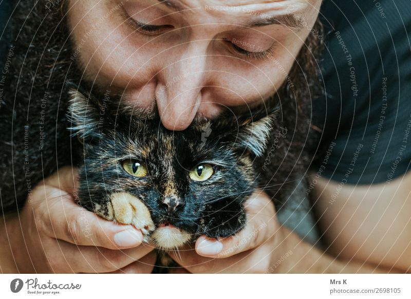 kiss Masculine Man Adults 1 Human being Animal Cat Animal face Kissing Authentic Beautiful Natural Soft Emotions Joy Happiness Colour photo Interior shot Day