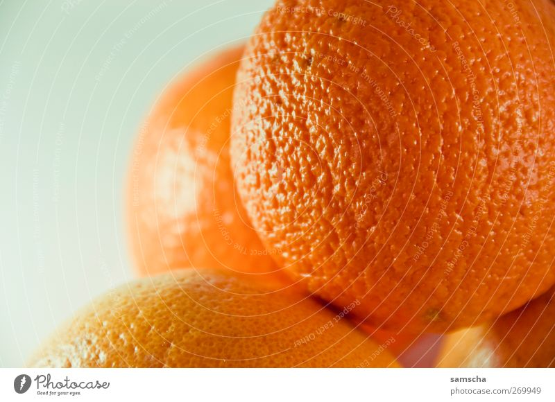 Cold Life Movement Healthy Orange Contentment Fruit Nutrition Natural Food Energy Fresh Sweet Good Healthy Eating