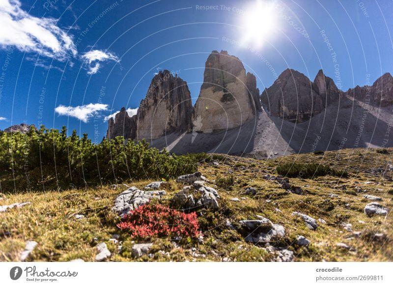 #781 Three peaks Dolomites Sexten Dolomites World heritage High plain Colour photo Hiking Footpath Peak Mountaineering Alps Beautiful weather Meadow Summer