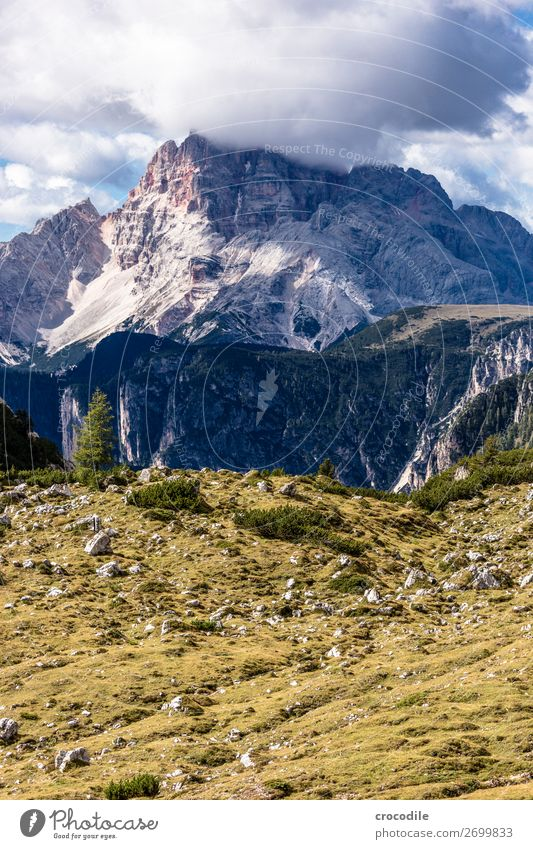 # 820 Three peaks Dolomites Sexten Dolomites World heritage High plain Colour photo Hiking Footpath Peak Mountaineering Alps Beautiful weather Meadow Summer Sun