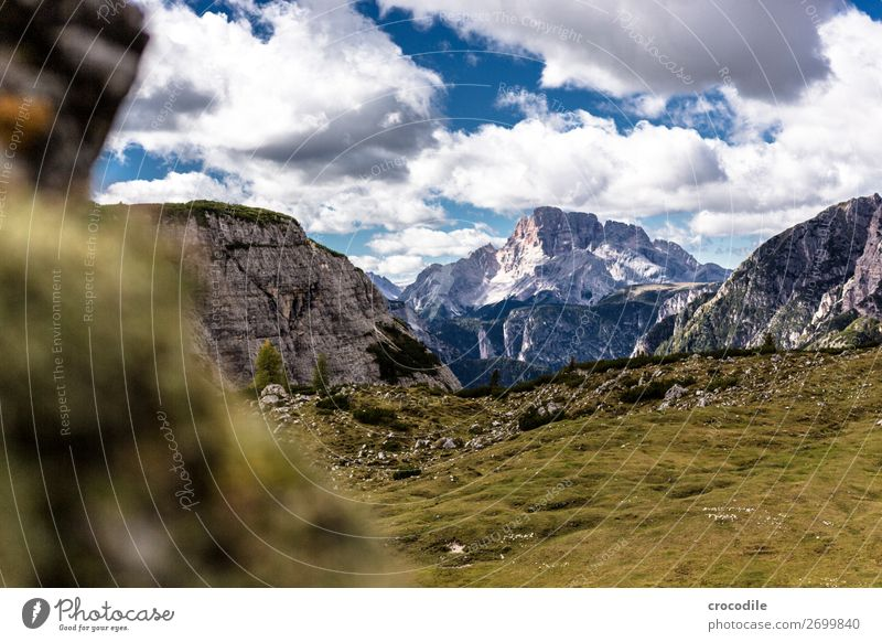 # 791 Three peaks Dolomites Sexten Dolomites World heritage High plain Colour photo Hiking Footpath Peak Mountaineering Alps Beautiful weather Meadow Summer Sun