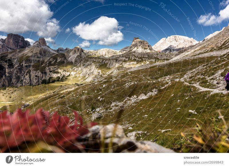 # 816 Three peaks Dolomites Sexten Dolomites World heritage High plain Colour photo Hiking Footpath Peak Mountaineering Alps Beautiful weather Meadow Summer Sun