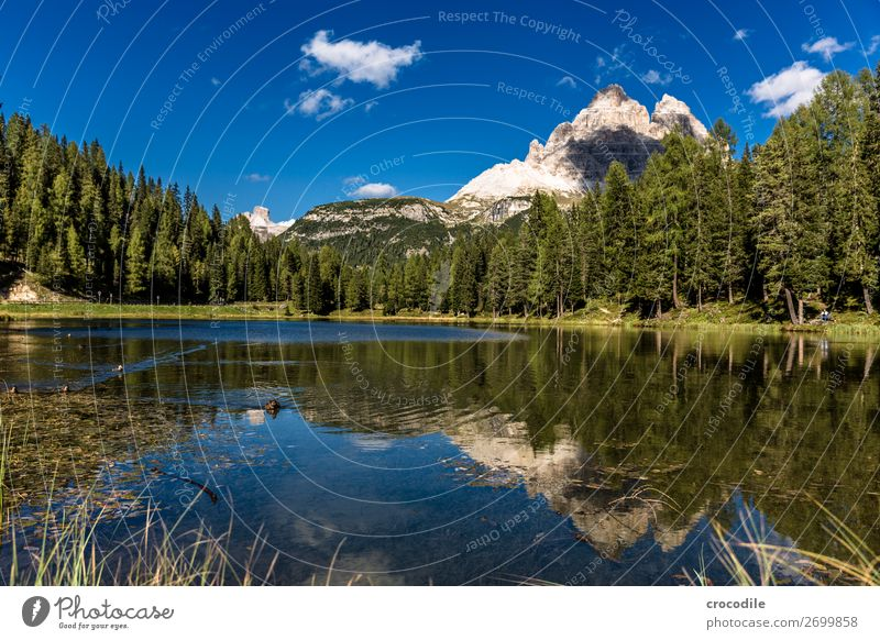 789 Three peaks Dolomites Sexten Dolomites World heritage High plain Colour photo Hiking Footpath Peak Mountaineering Alps Beautiful weather Meadow Summer Sun