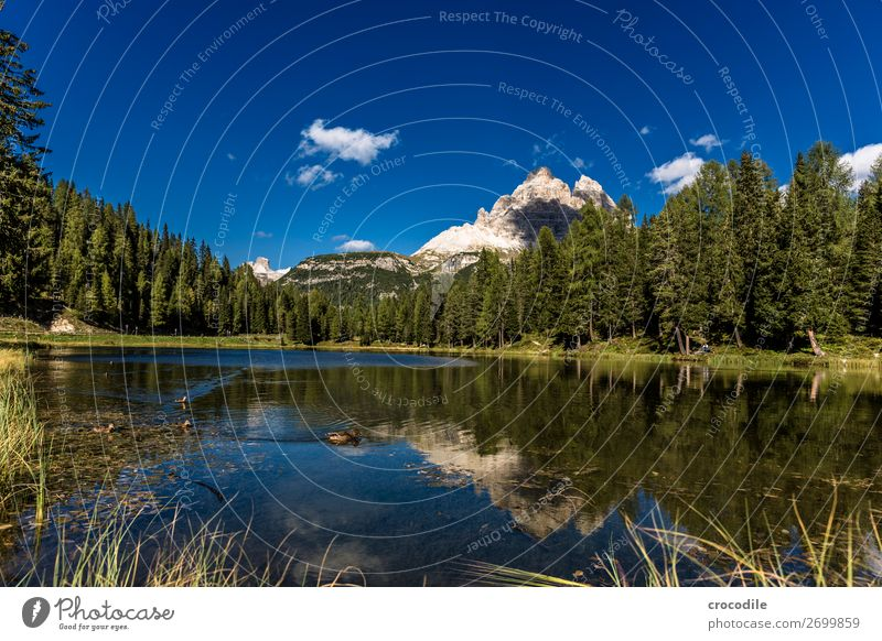 # 788 Three peaks Dolomites Sexten Dolomites World heritage High plain Colour photo Hiking Footpath Peak Mountaineering Alps Beautiful weather Meadow Summer Sun
