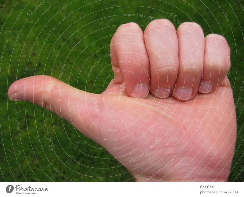 Man Hand Green Skin Fingers Tall Closed Posture Catch Direction Thumb Left Indicate Gesture Fist