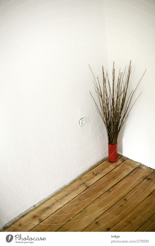 Loneliness Wall (building) Emotions Wall (barrier) Moody Room Stand Living or residing Decoration Gloomy Corner Branch Simple Dry Hallway Vase