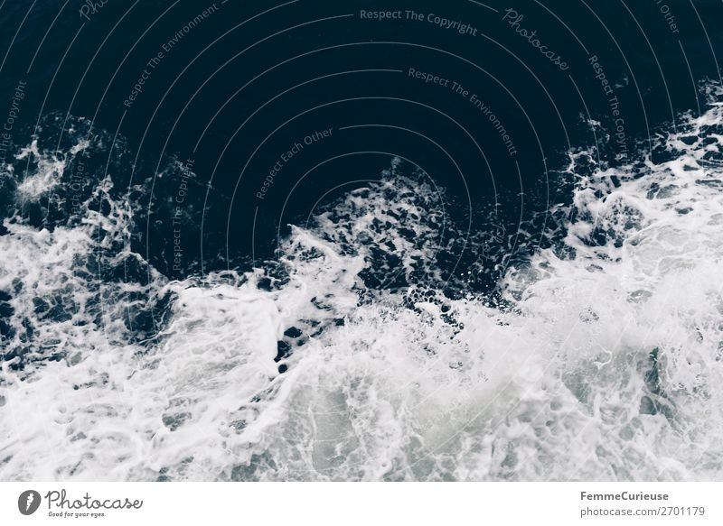 View to waves caused by ferry Nature Vacation & Travel Waves Water Ocean Foam Colour photo Exterior shot Copy Space top
