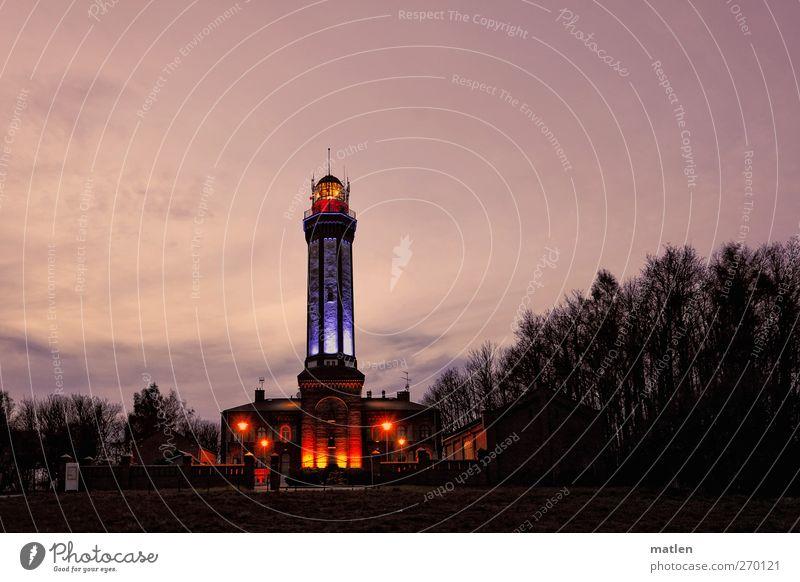 Sky Tree Calm Black Forest Landscape Pink Illuminate Romance Landmark Lighthouse Night sky